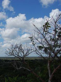 El Fondo Verde del Clima podría arrancar su primer proyecto en 2015 | Mercados de Medio Ambiente...