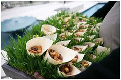 Nuts served in cones, placed on a grass bed - ZaraZoo Photography