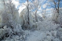 https://flic.kr/p/qnREUX | Ice Sculpture 4 | Ice magic at The Cove Beach in Goderich.  High winds and extremely cold temperatures caused the waves to wash over the trees on the breakwater and make these awesome ice sculptures. Walking conditions were treacherous.  A very magical place.
