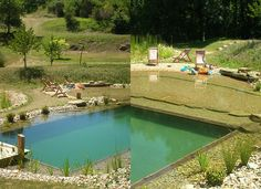 Natural Swimming Pool Ecological | Home Decorating | Landscaping Ideas