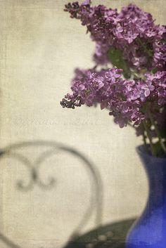 Lilacs in blue vase. Photo by Sandra (photos and tea).