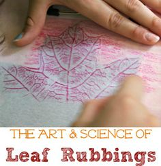 Leaf rubbings are both fun to make and beautiful to look at. This website indicates parts of the leaf to teach to children.