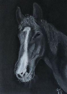 Pastelportret A3 formaat op zwart papier A3, Goats, Horses, Animals, Animales, Animaux, Horse, Animal, Animais