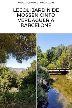 Balade à Barcelone : Jardins de Mossèn Cinto Verdaguer Country Roads, Nature, Garden, Olympic Size Swimming Pool, Wild Flowers, Ride Or Die, Naturaleza, The Great Outdoors, Natural