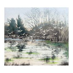 Waterlogged - Jo Barry - etching