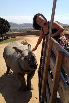 San Diego Zoo Safari Park #animals