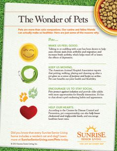 Four-legged friends aren't just cute pals, they also offer real health benefits for their human friends.