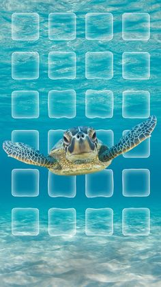 ↑↑TAP AND GET THE FREE APP! Nature Turtle Under the Sea Blue Animal Icons Beach Shining Summer Sand Sun Ocean Travel Vacation HD iPhone 6 plus Wallpaper