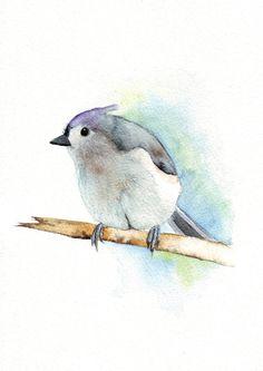 Titmouse by Louise De Masi - Bird Painting