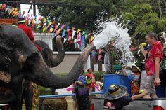 voi tham gia lễ hội tạt nước cùng vé máy bay Air Asia