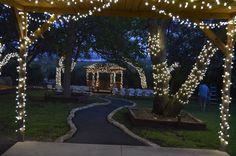 Fairy lights in trees...love!