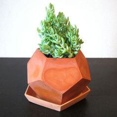 Terra-cotta planters are ubiquitous, but these pots (available in white or natural clay) by Brooklyn-based designer Megumi Yoshida update the typology with a mod geometric bent. From $36    This originally appeared in Plant Life.