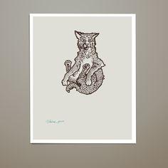 Animals in the Air: Fox, Raccoon, Possum, Bobcat / Caleb Faires