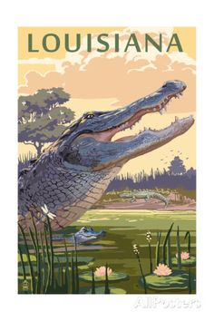 Louisiana - Alligator and Baby Art at AllPosters.com