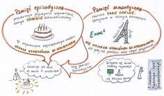 Pamięć epizodyczna i semantyczna, P. Zimbardo, Psychologia i życie