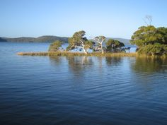 A beautiful photo Snake Island and the Walpole-Nornalup Inlet on the south coast of Western Australia