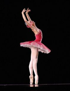 I want/ soon will really need new pointe shoes