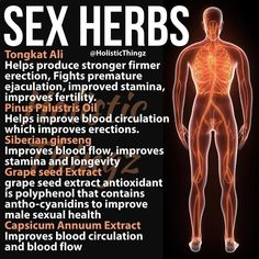 Take these herbs to increase the blood flow to your sex organs and regain your firmness. Fitness Workouts, Fitness Motivation, Health And Nutrition, Health And Wellness, Health Tips, Health Fitness, Men Health, Health Facts, Natural Cures