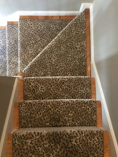 Stair Runners, Animal Prints, Stairs, Carpet Stairs, Staircases, Ladder,  Stairway