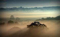 Golden Mist by Rustiebin2013, via Flickr