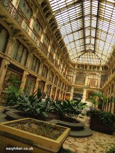 """Visit Galeria Romana on a town walk in Turin"""