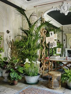 Interior Jungle | From Moon to Moon | Bloglovin'