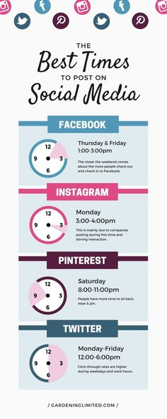 Looking for ways to best use your time on social media? This graphic shows you the best times to post on social media when you have little time to spend on those sites. Get more tips on how to drive traffic to your blog by clicking on the image. #infographic #graphicdesign #socialmedia #socialmediamarketing #socialmediamanagement #socialmediamanager #facebook #facebookmarketing #instagram #pinterest #pinterestmarketing #twitter #twittermarketing #blog #blogger #blogging #blogpost