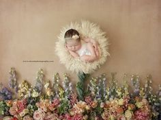 Dream photography sessions by Brittany Gidley Photography are the most magical and whimsical photo shoots available for babies and children in Cleveland. Newborn Twins, Newborn Session, Newborn Photos, Pregnancy Photos, Maternity Photos, Dream Photography, Infant Photography, Newborn Studio, Elegant Flowers