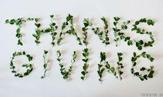 Thanksgiving sign made of leaves on their stems   //   FOXINTHEPINE.COM