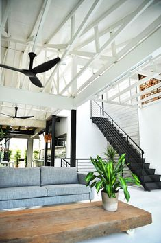 trendland loft interior design inspiration - this space seems so fresh, like a breath of fresh air (yet cozy) Living Spaces, Living Area, Living Room, Studio Loft, Decoration, Industrial Loft, White Industrial, Industrial Living, Industrial Design, Tropical Homes, Interior Office, Beach Cottages, Ceiling, Sweet Home, Landscaping, Stairs, Cottage, Little Cottages, Lounges, Home Decoration