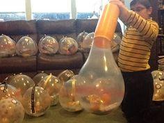 Balloon Topiary, Balloon Flowers, Balloon Centerpieces, Balloon Garland, Balloon Display, Balloon Gift, Balloons Galore, Holiday Baskets, Balloon Animals