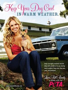 Laura Bell Bundy: Keep Your Dog Cool it really blows my mind that people can't see this....