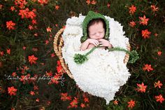 Durant, Oklahoma newborn and baby photographer. Newborn baby laying in basket in a field of flowers. Outdoor newborn photography.