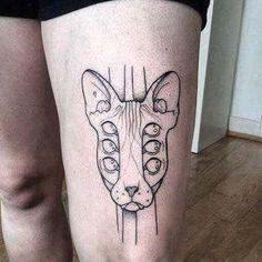 lsd kitty