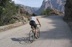 road bike! Beautiful ride up a mountain.