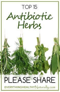 This Pin was discovered by Charlotte Hardy. Discover (and save!) your own Pins on Pinterest.wonderful pins to learn and even plant your own herbs medsc.cool.........s o much to learn and do everyday.mothernatural girl.STILL LEARNING SOMETHING NEW EVERDAY.AMEN