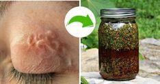 Cucumber, Health Tips, Food And Drink, Health, Plants, Wax, Households, Cauliflower, Zucchini
