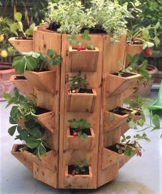 Strawberry Pallet Planter Vertical - What Is It - myhomeorganic - Planters -
