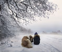 Elena Shumilova's magical, wintry photography: Boy and dog sitting in the snow
