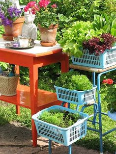 """Ideas for """"Raised Bed"""" Salad Gardens"""