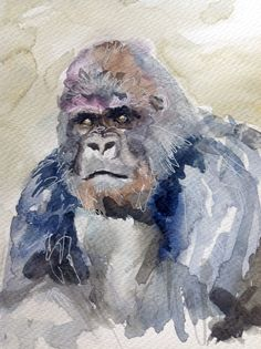 Gorilla in watercolour by Lesley Hill, UK