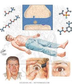 Cholinergic drugs