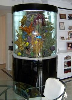 Fish tank, What a gorgeous aquarium.
