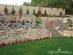 Mój ogród pod górkę... - strona 244 - Forum ogrodnicze - Ogrodowisko