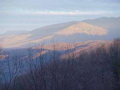http://www.auntiebelhams.com/cabins/201-alpine-view?id=201