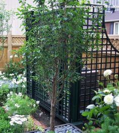Great Way to Hide an Air Conditioner Rue de Musee penthouse garden - traditional - Landscape - Montreal - Sasha Newman Hide Water Heater, Air Conditioner Screen, Air Conditioner Cover Outdoor, Penthouse Garden, Hide Trash Cans, Landscape Design, Garden Design, Hidden Pool, Outdoor Projects