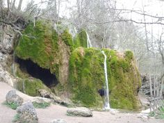 Waterfall at Nohn (Germany). Because of the massive amount of calcair in the ground and water, this waterfall actually grows.