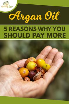 Argan Oil: 5 Reasons Why You SHOULD Pay More! Argan oil benefits, argan oil hair, argan oil face, argan oil benefits for hair, argan oil hair mask, argan oil hair color, argan oil uses, best argan oil, argan oil benefits for skin, argan oil face benefits, organic argan oil, argan oil face acne, how to use argan oil, argan oil lip gloss, argan oil recipes. #arganoilbenefits #arganoilhair #arganoilface #arganoiluses #arganoilforskin Argan Oil Lips, Argan Oil Hair Mask, Face Care Tips, Face Care Routine, Sensitive Skin Care, Oily Skin Care, Argan Oil Skin Benefits, Beauty Tips For Hair, Beauty Hacks