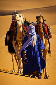 Traveling Merchant with packed camels - desert life