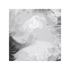 Black and White Enlarged Pony Canvas Stretched Canvas Print